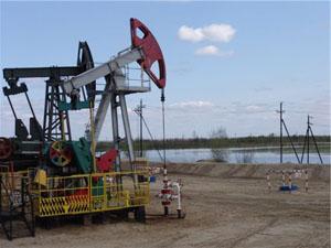 Нефтяная промышленность РФ: перспективы, особенности развития и основные проблемы